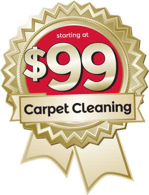 Mango Maids $99 Carpet Cleaning Service