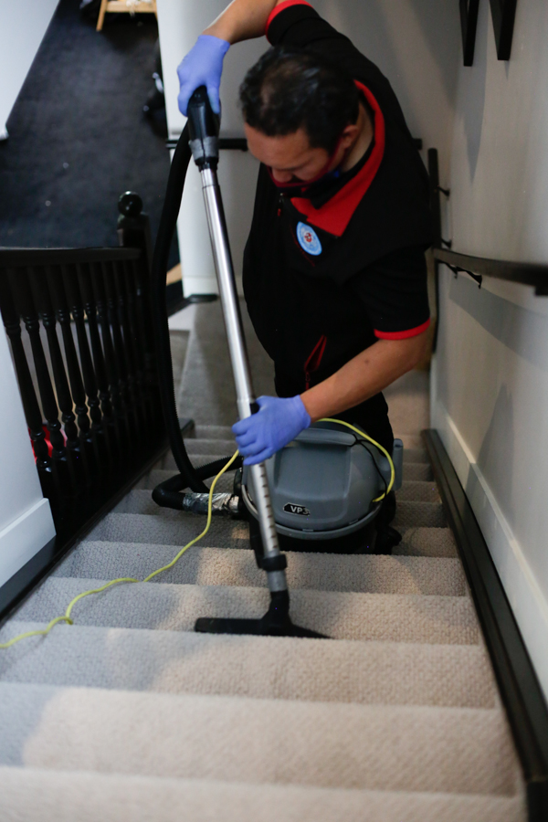 Steam Carpet Cleaning by Mango Maids in Edmonton & Calgary